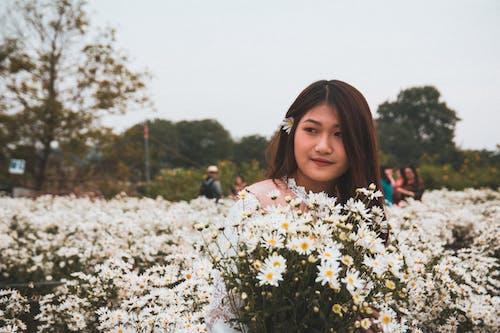 Immagine gratuita di fiori bellissimi