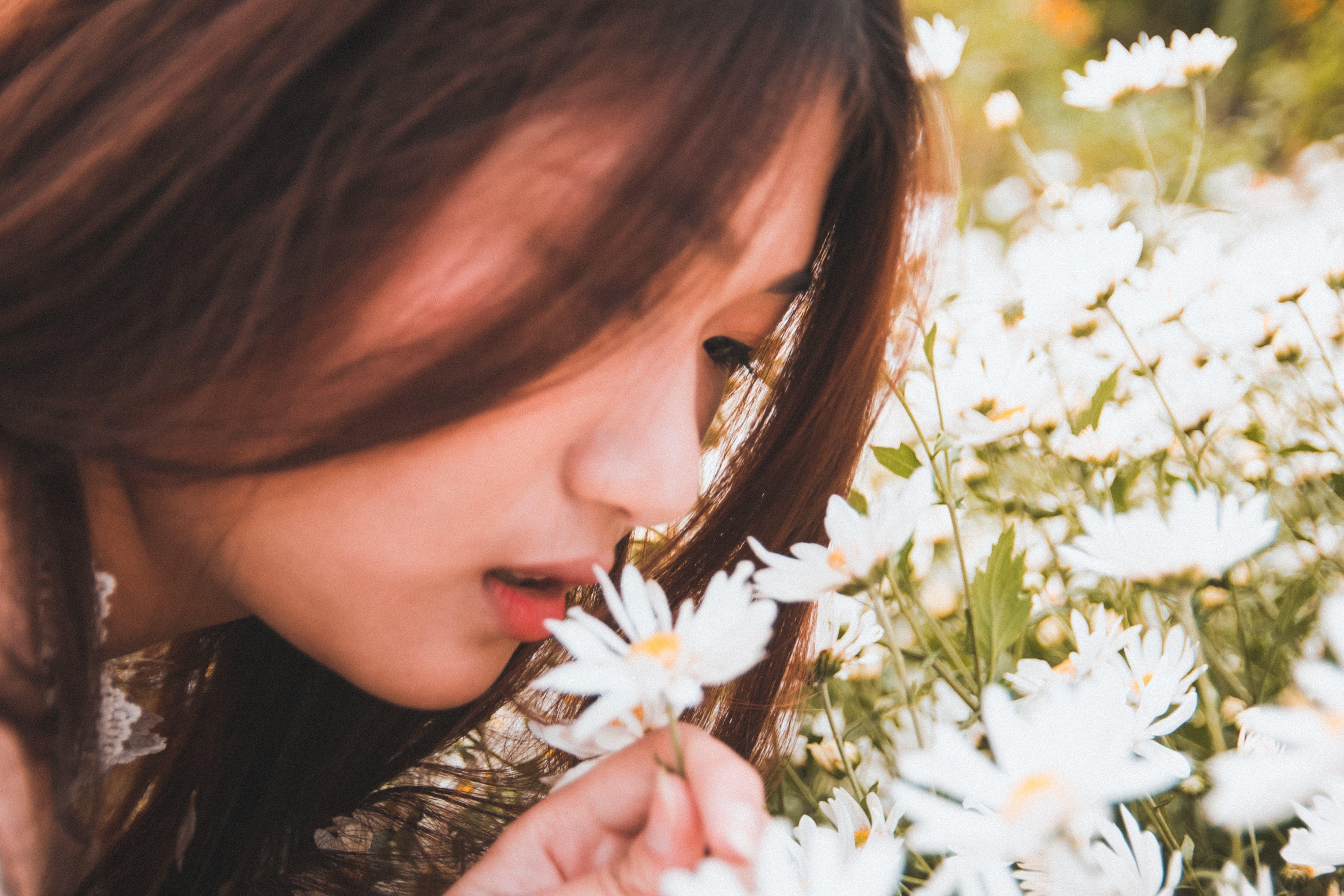 Gratis arkivbilde med asiatisk kvinne, blomster, bruke, dagslys