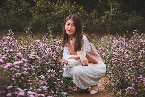 Δωρεάν στοκ φωτογραφιών με ανθισμένος, ασιάτισσα, βαθύ κάθισμα, λουλούδια