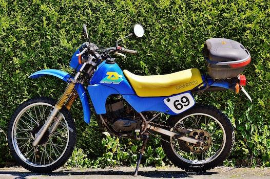 Blue and Yellow Suzuki Ts