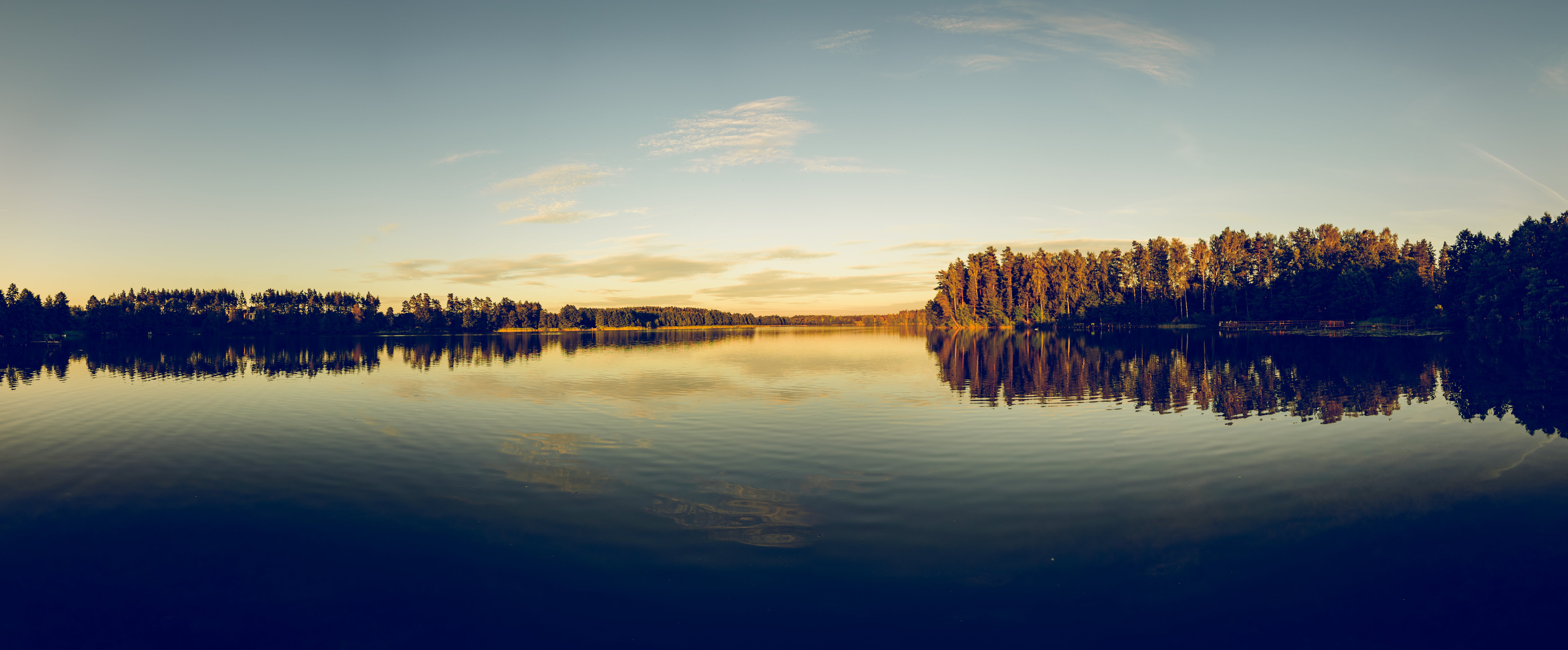 Silhouette of Trees Beside Body of Water Under Clear Blue Sky
