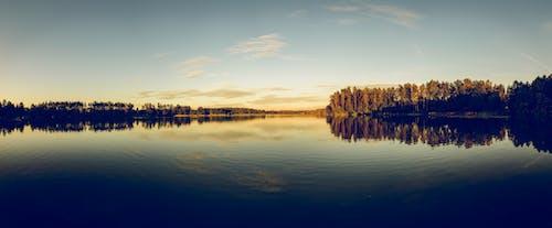 açık, ağaçlar, akşam, berraklık içeren Ücretsiz stok fotoğraf
