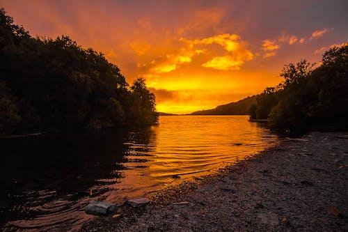 Photos gratuites de arbres, aube, automne, ciel orange