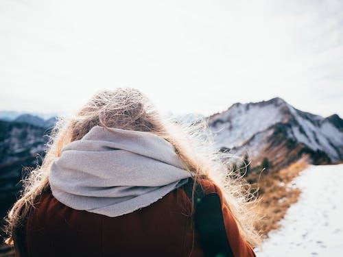 Foto d'estoc gratuïta de bufanda, cel, constipat, dona