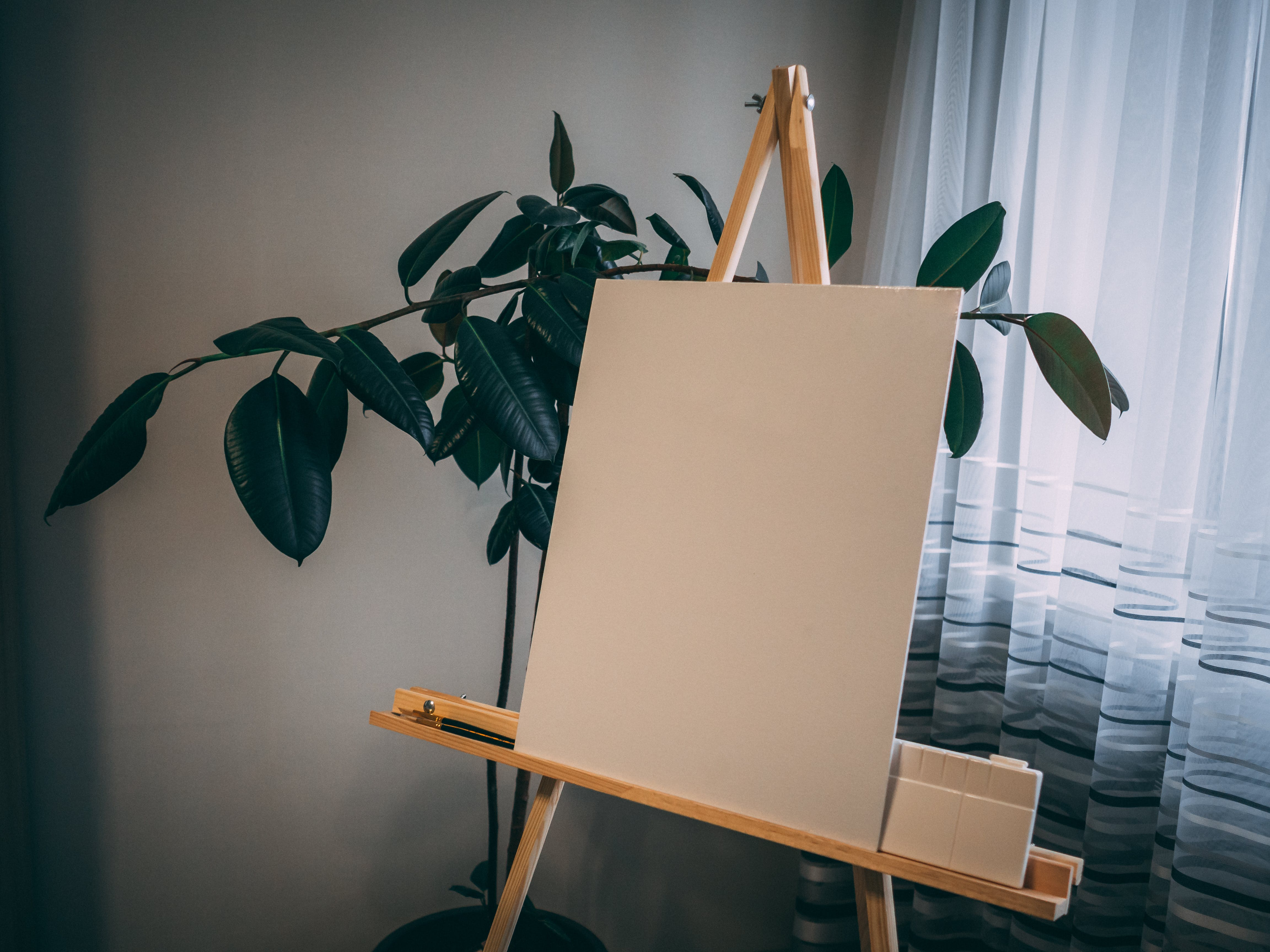 White Board on Easel Beside Green Plant