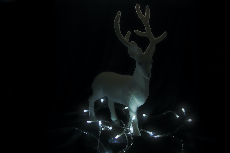 Free stock photo of christmas, christmas art, christmas decorations, cool wallpaper