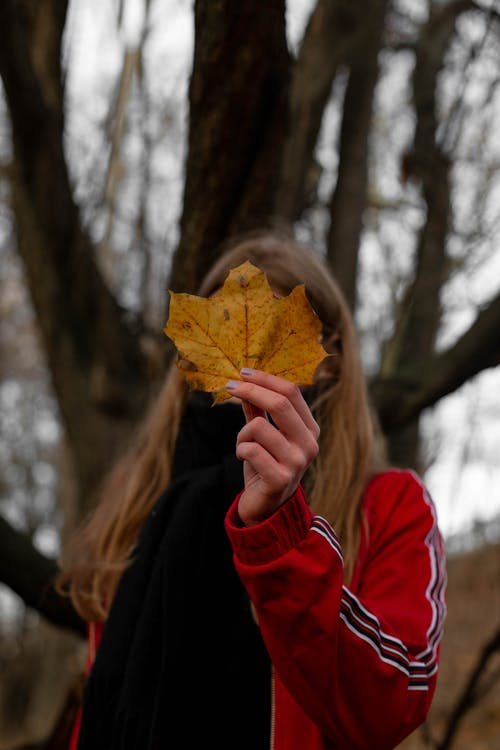 Woman Holding Dried Maple Leaf