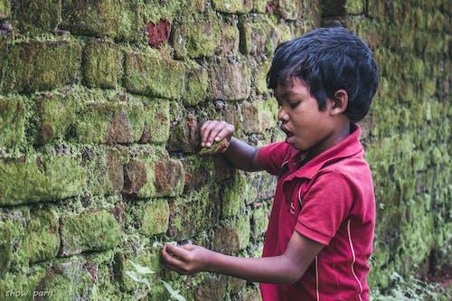 Immagine gratuita di asia, divertimento, giocare, india