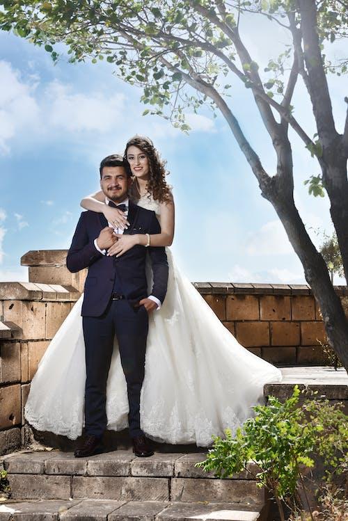 Foto d'estoc gratuïta de a l'aire lliure, amor, arbre, boda