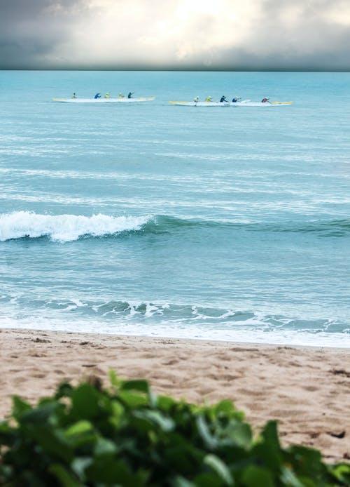 Gratis lagerfoto af bådsejlads, blå, e-sport, hav