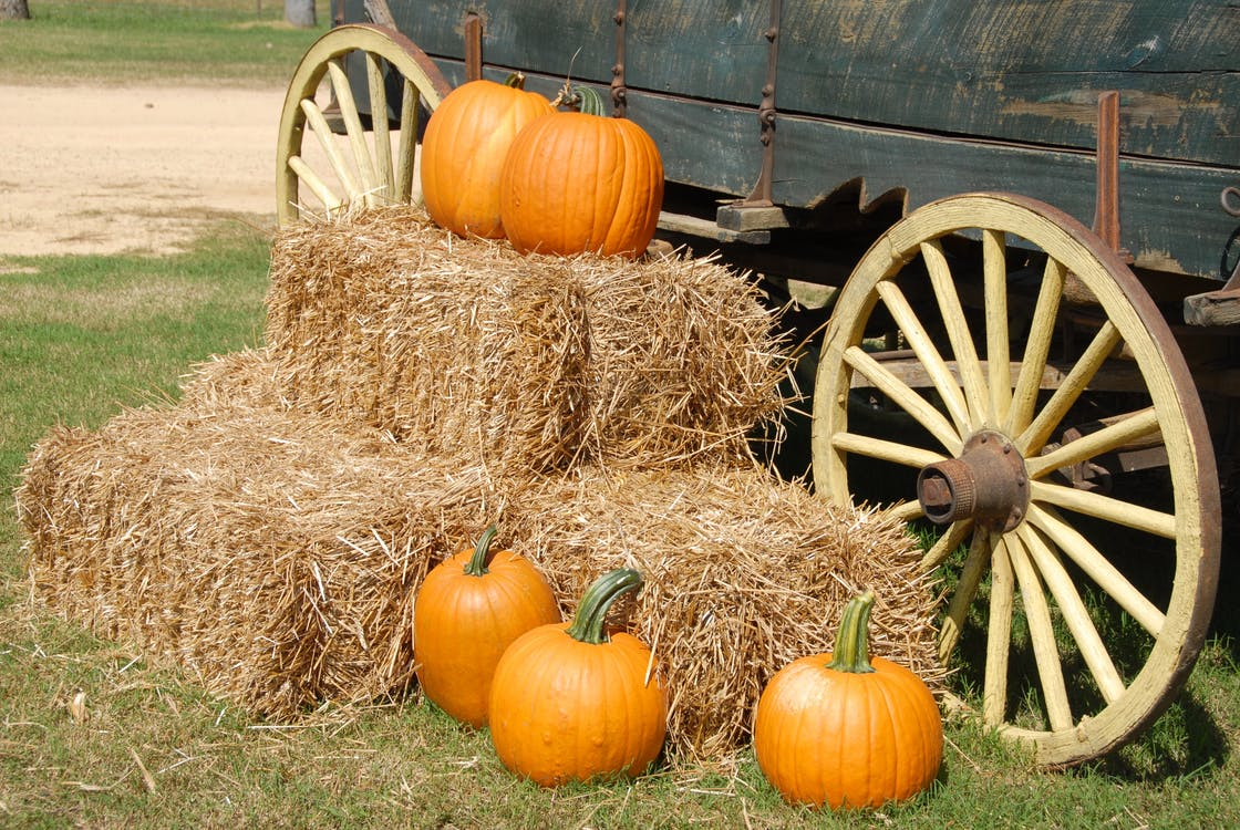 Orange Pumpkin on Brown Hay Near Gray Carriage