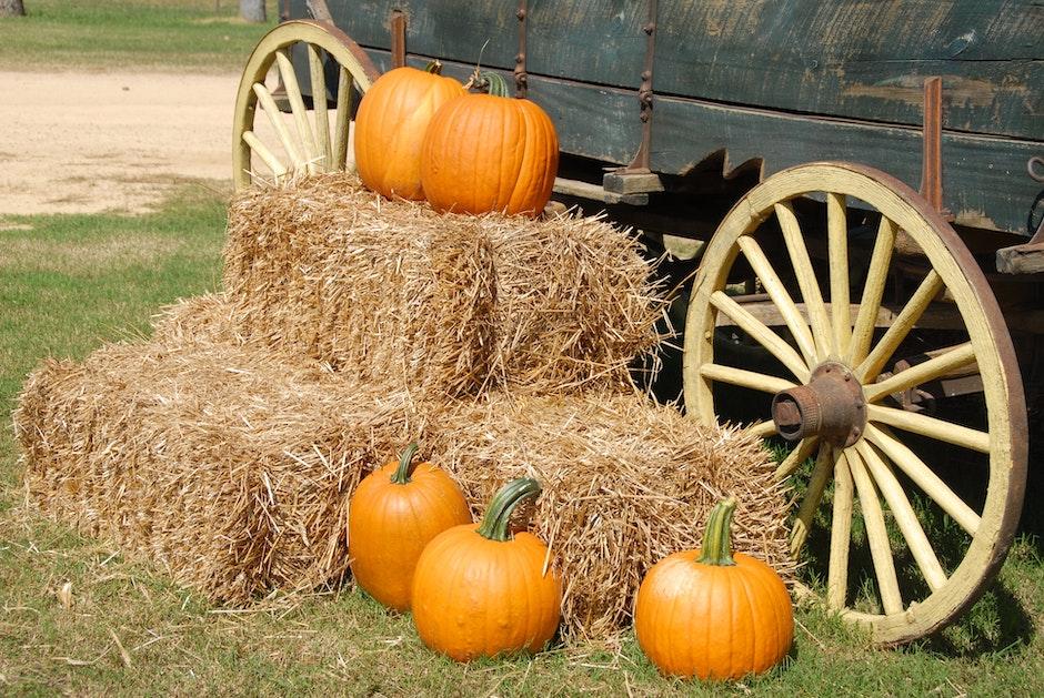 Orange Pumpkin on Brown Hay Near Gray Carriage