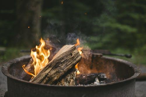 나무, 뜨거운, 모닥불, 불의 무료 스톡 사진