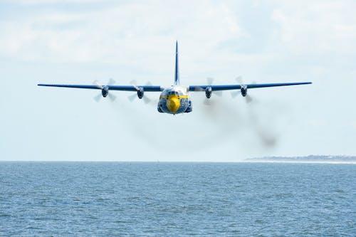 날으는, 물, 바다, 비행의 무료 스톡 사진