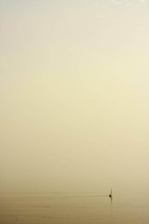 à contre-jour, brouillard, brumeux