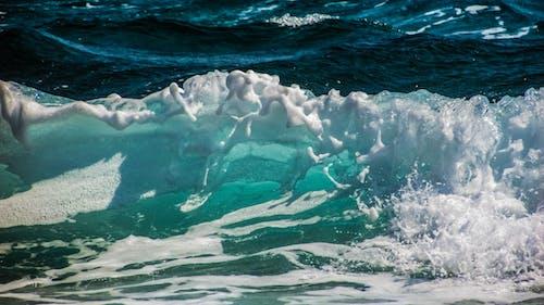 Foto stok gratis air, cairan, gelombang, guyuran