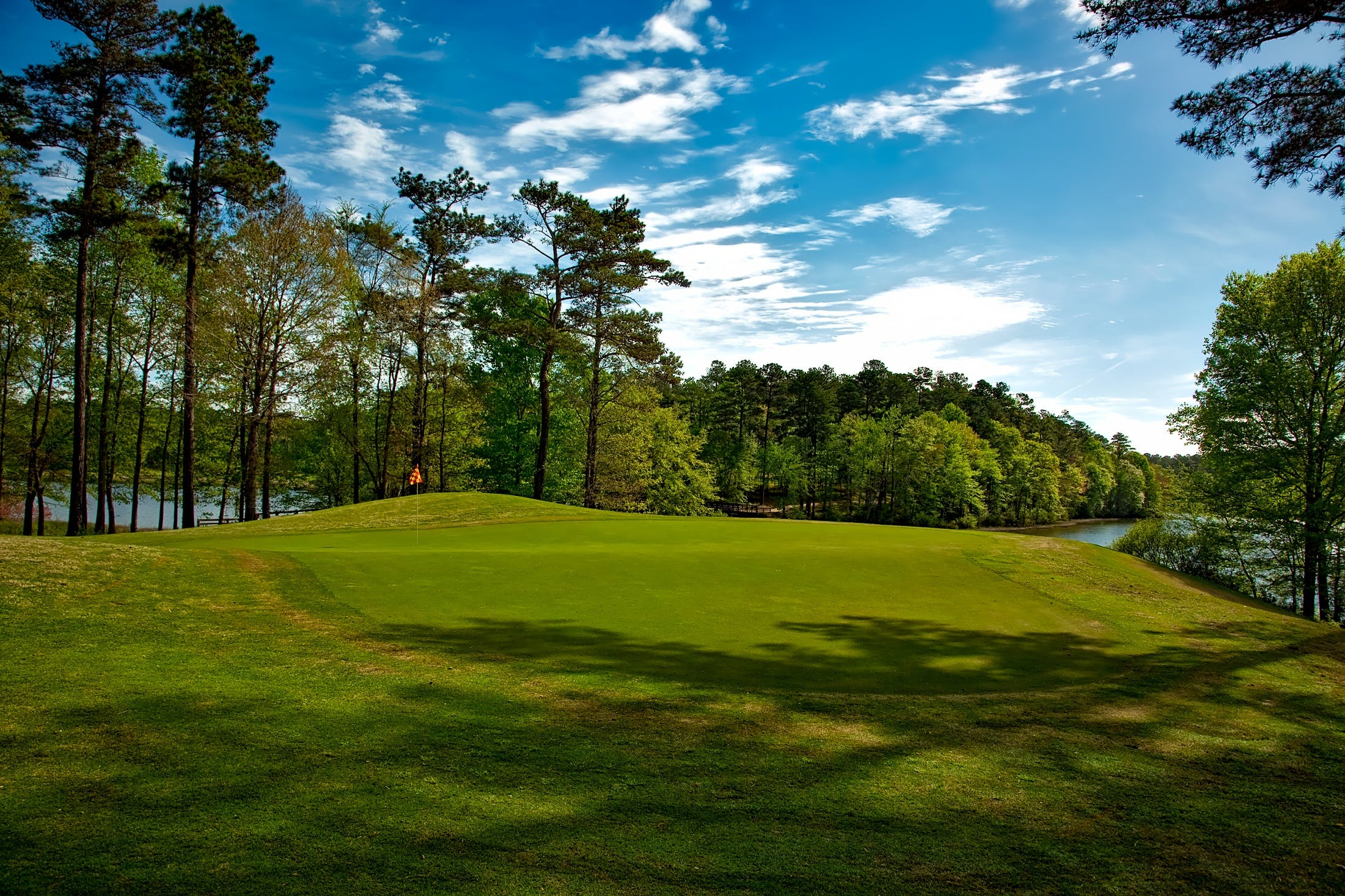 bäume, blauer himmel, golf