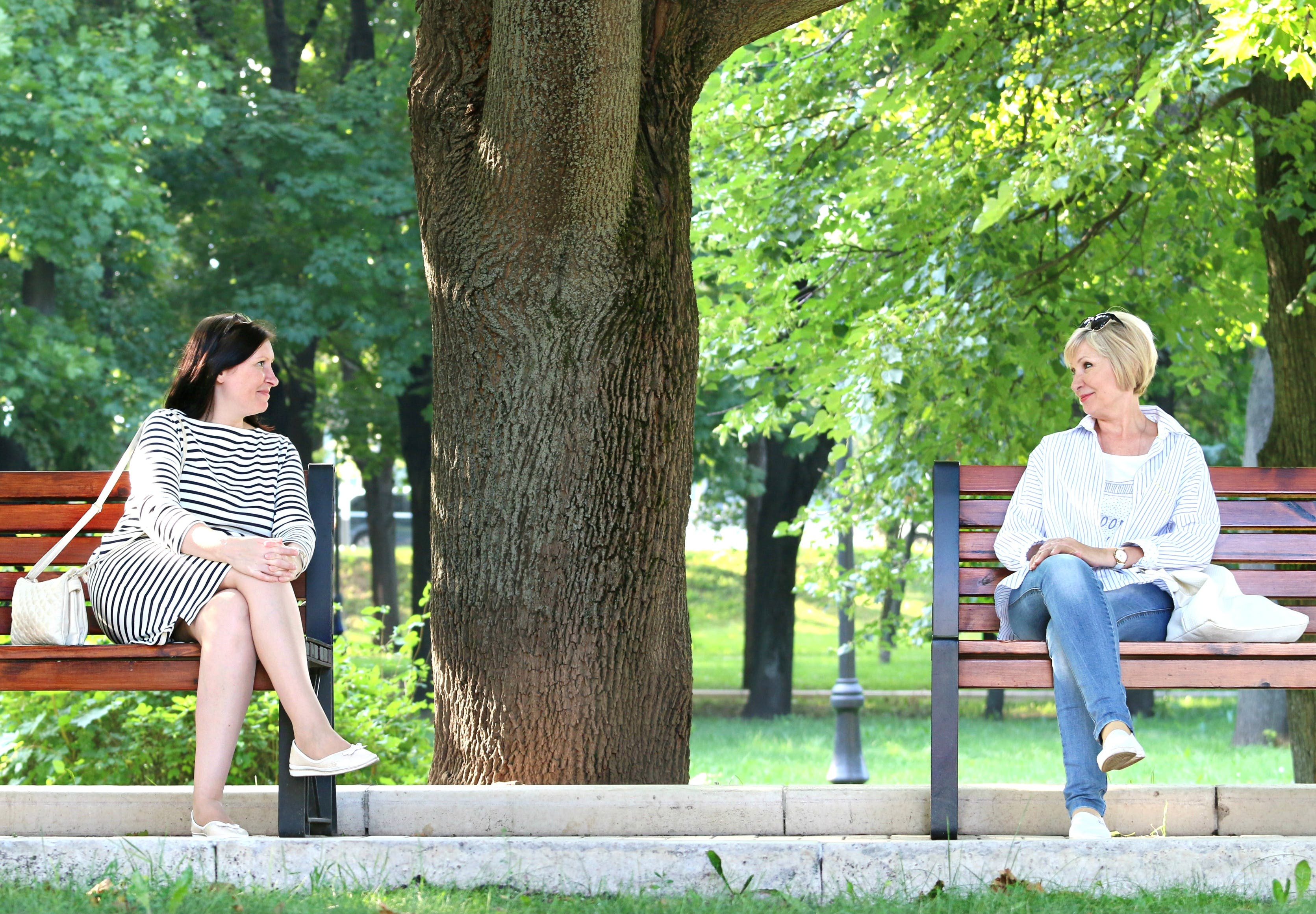 2 Woman Sitting in the Different Bench Chair Near Tree in the Park during Daytime