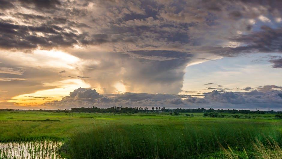 New free stock photo of landscape, nature, sunny