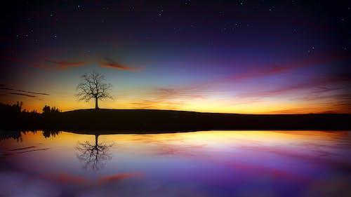 Foto d'estoc gratuïta de alba, capvespre, cel, fons de pantalla de la natura