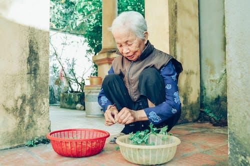Foto profissional grátis de adulto, antigo, cestas, cestos