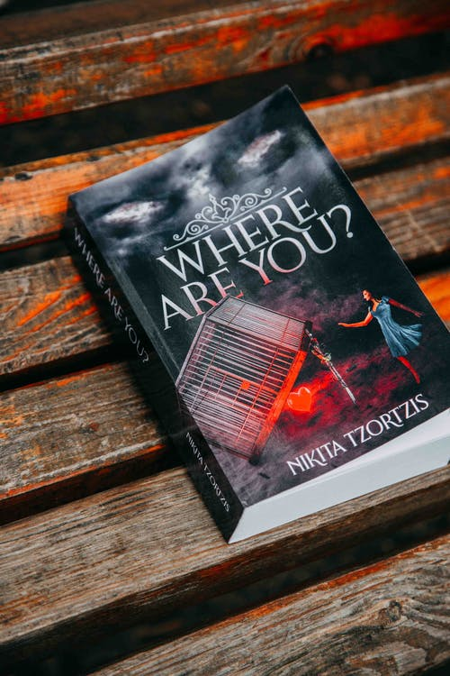 Photo of the Book Where Are You by Nikita Tzortzis