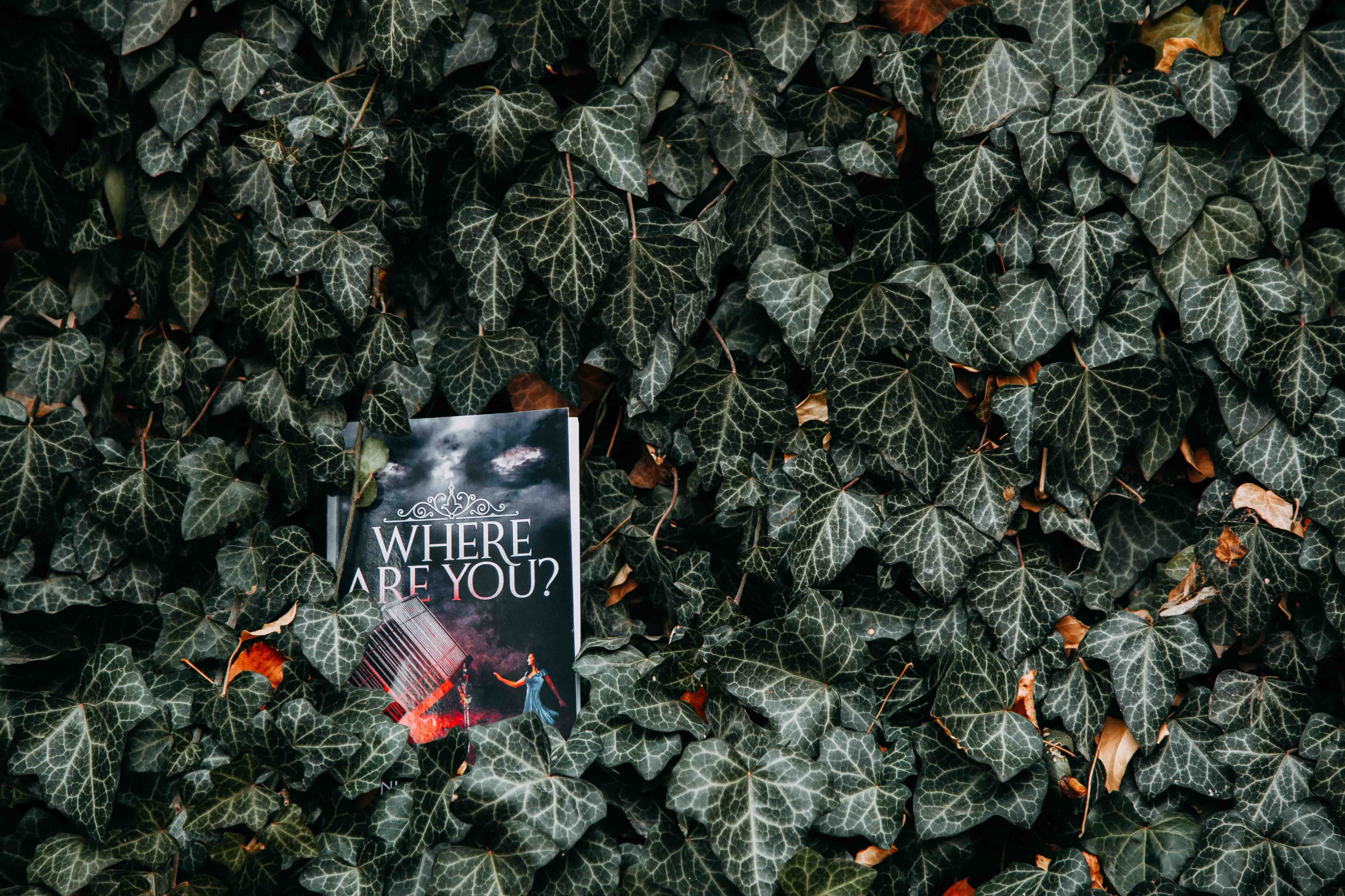 Where Are You? Book on Green Leafed Plants