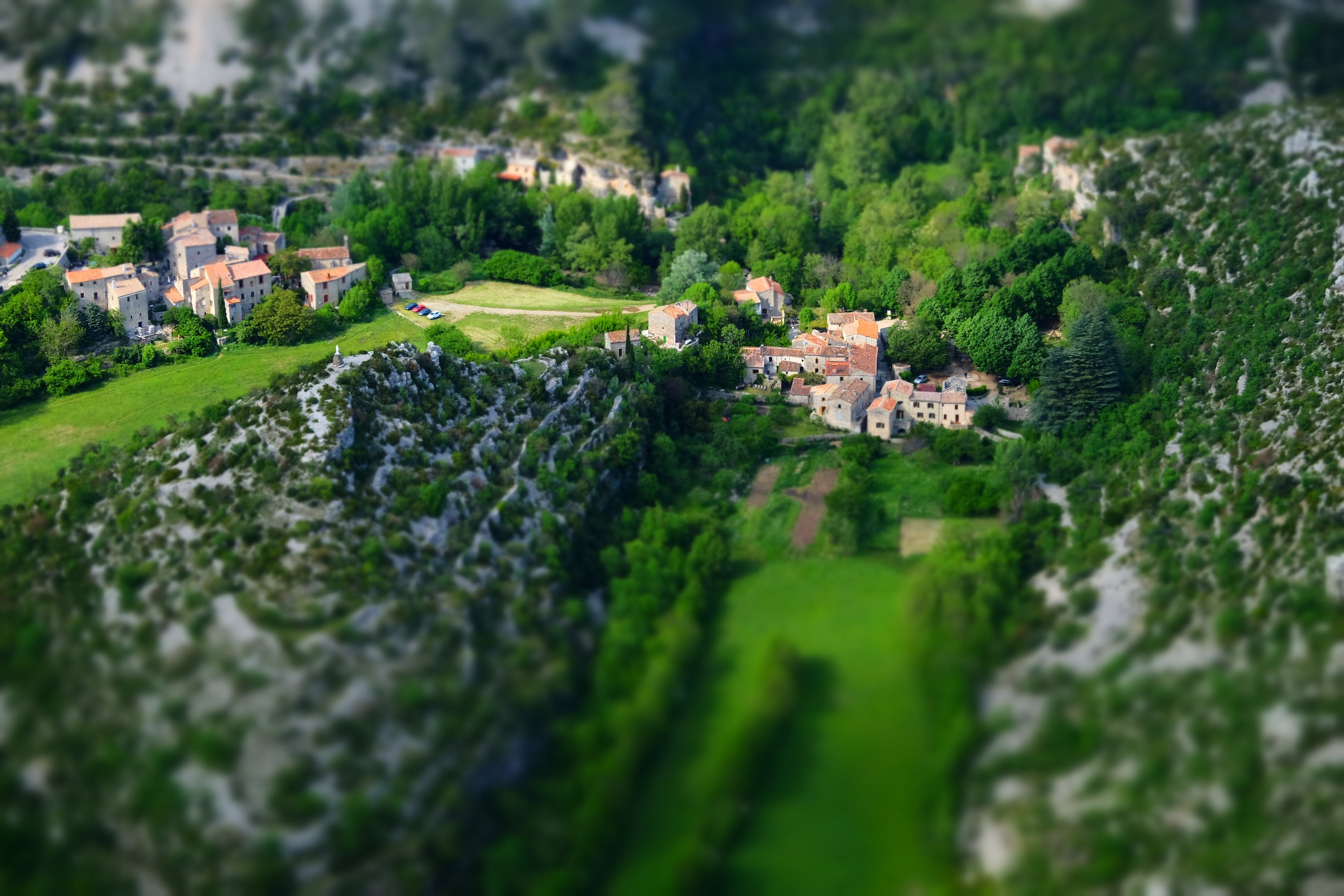 Wide Angle Photography of Houses Surrounded With Trees