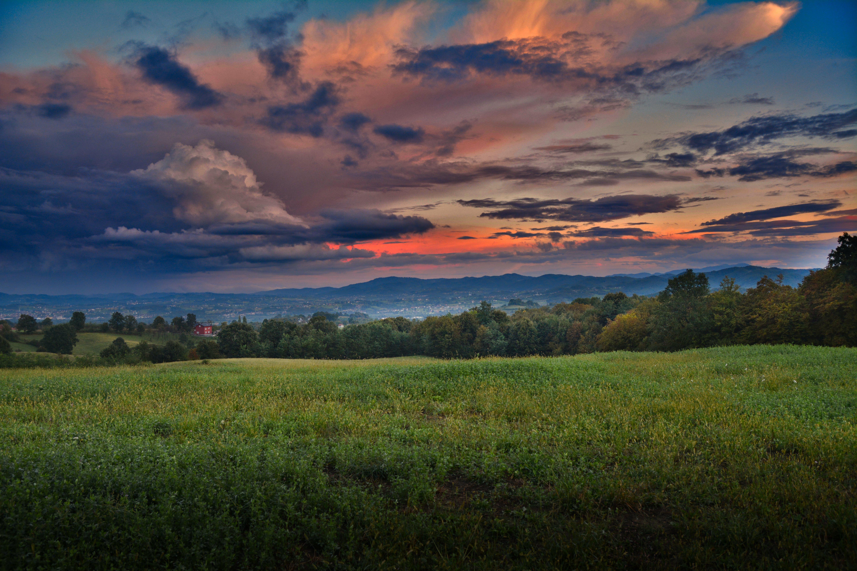 Gratis arkivbilde med åker, gress, gylden time, himmel