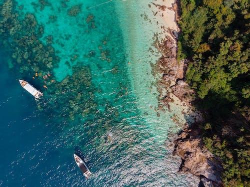 Foto profissional grátis de água, areia, árvores, barcos