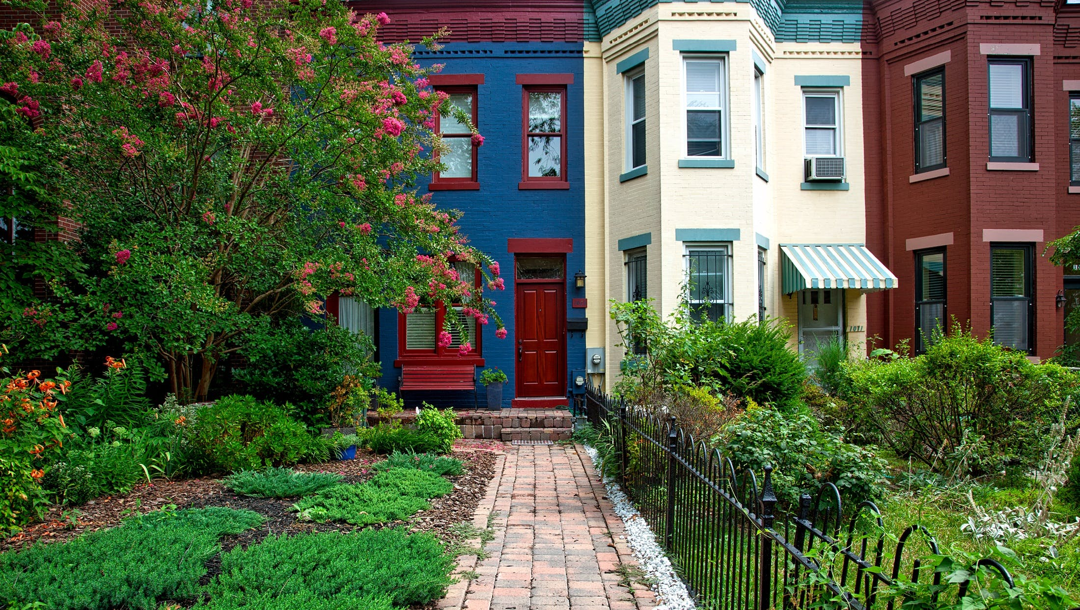Free stock photo of city, garden, architecture, colorful