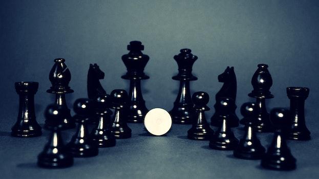 Free stock photo of white, king, chess, black and white
