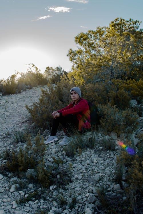 Бесплатное стоковое фото с Взрослый, дерево, дневной свет, досуг