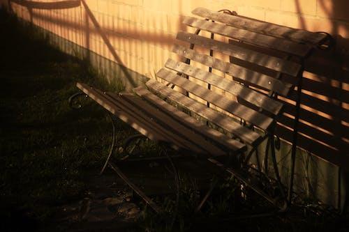 Gratis lagerfoto af sol, solbadning, solstråle, stol