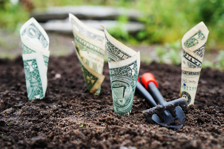 money in dirt