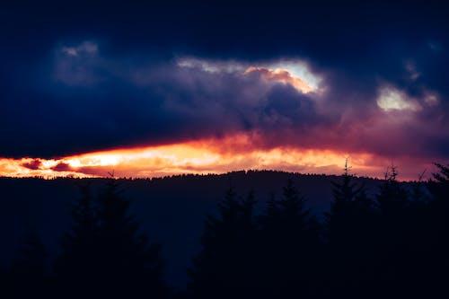 Imagine de stoc gratuită din apus, backlit, ceață, cer