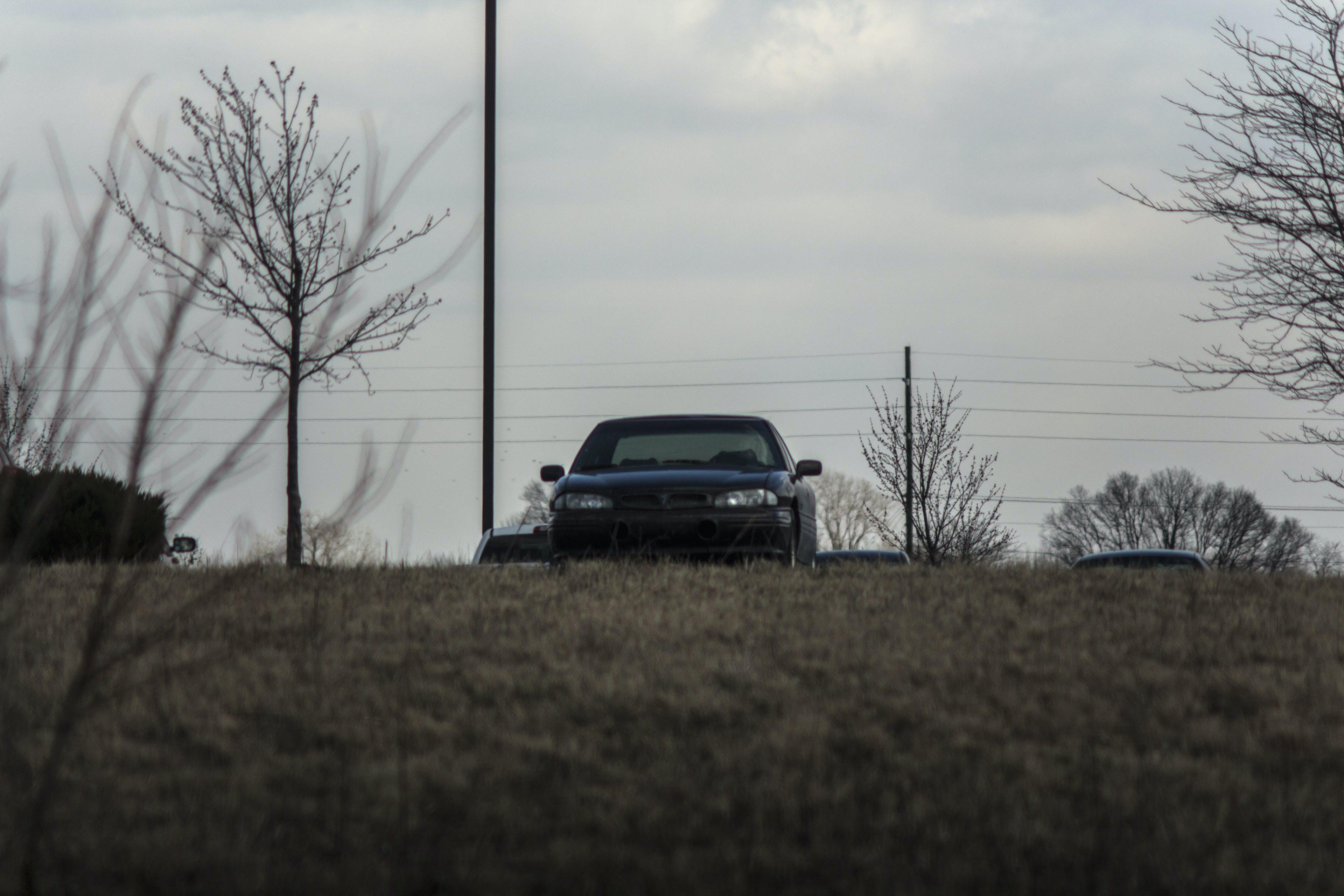 Kostenloses Stock Foto zu auto, automobil, bonneville, feld