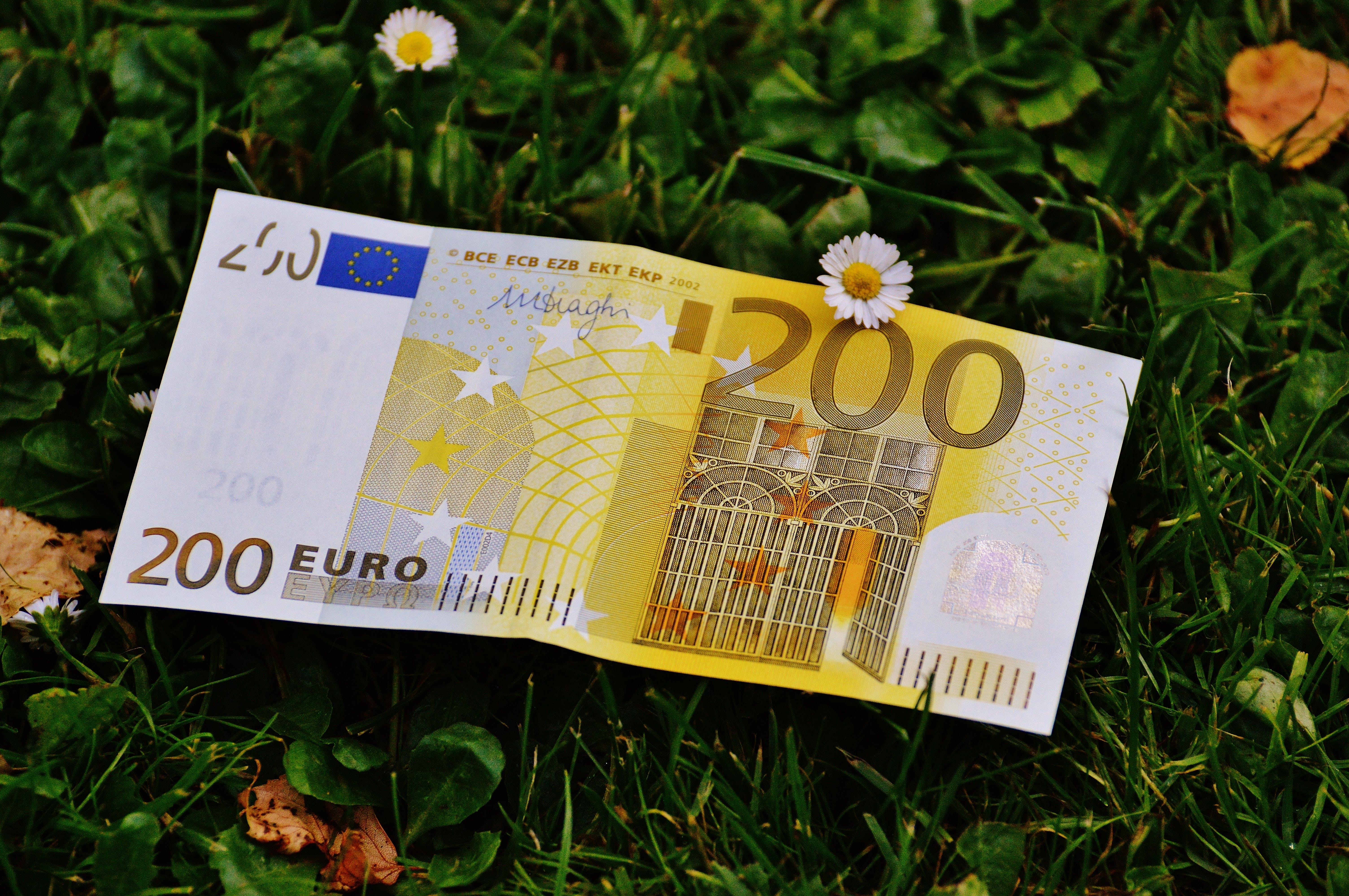 Gratis arkivbilde med euro, gress, nærbilde, papirpenger