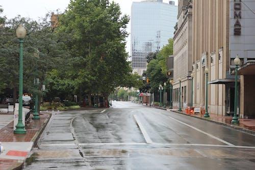 Ingyenes stockfotó charleston wv, eső, eső után, város témában