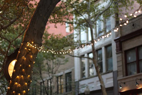 Free stock photo of capitol street, Charleston, christmas lights, city