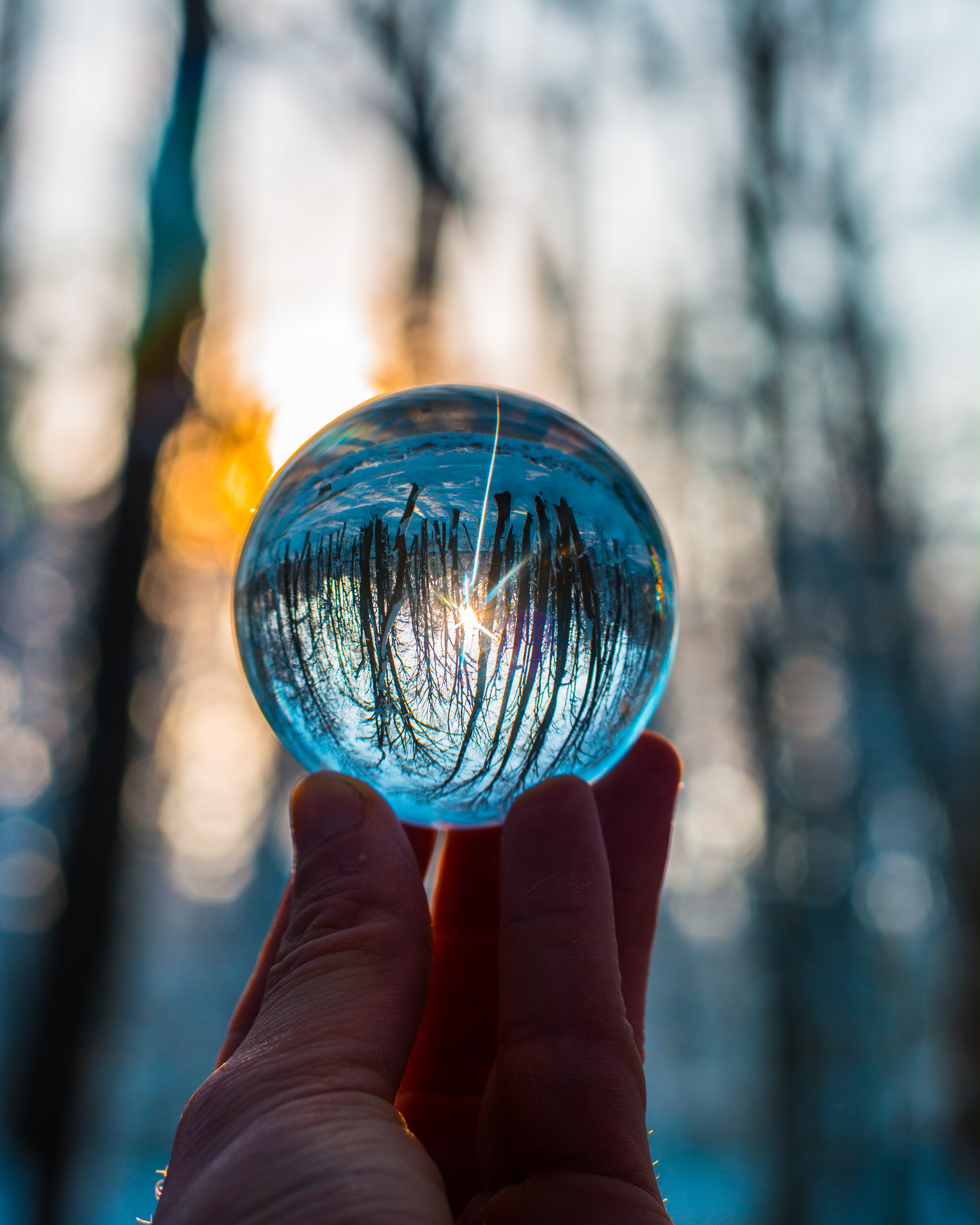 Photo Of Person Holding Crystal Ball Free Stock Photo