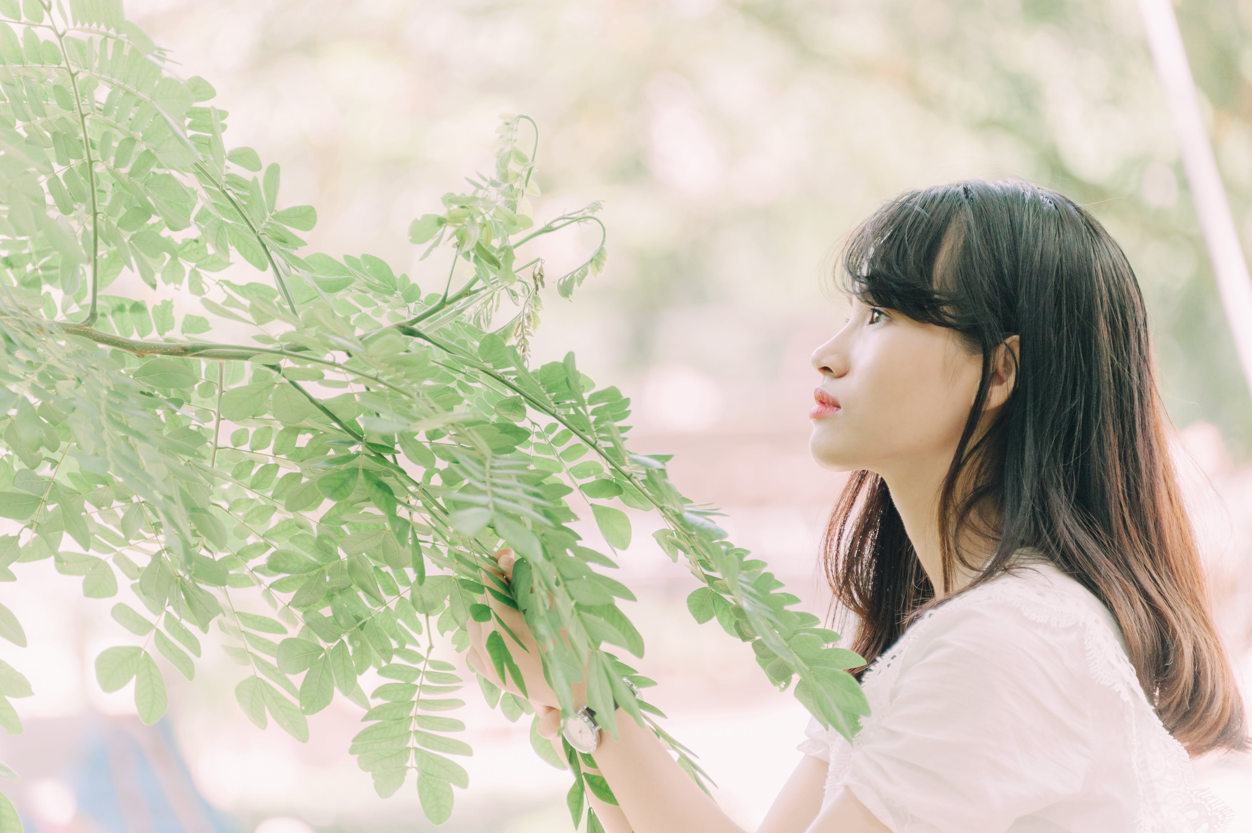 Woman Looking at Green Leaves of a Tree