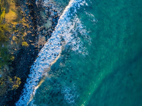 Aerial Photography of Shore and Body of Water