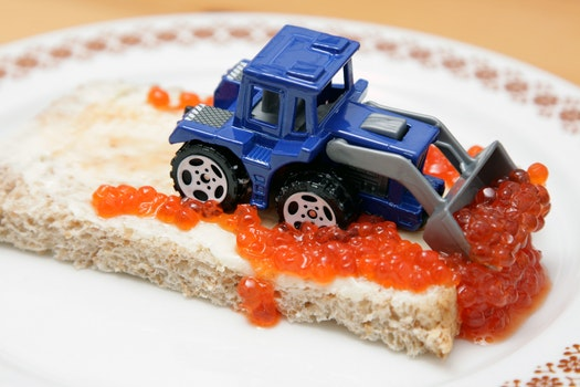 Blue and Gray Excavator on Top of Bread