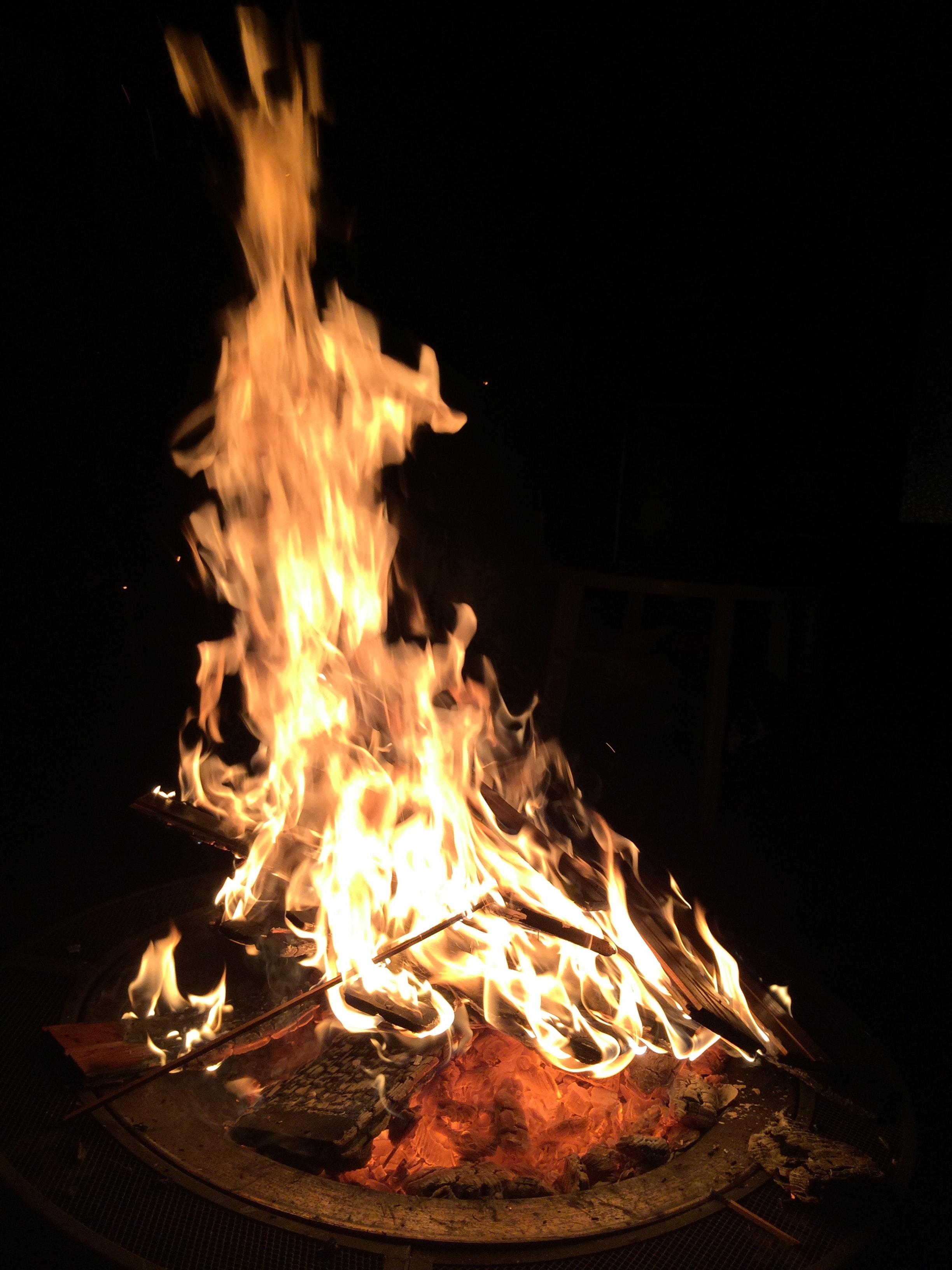 Free stock photo of campfire, fire, flames
