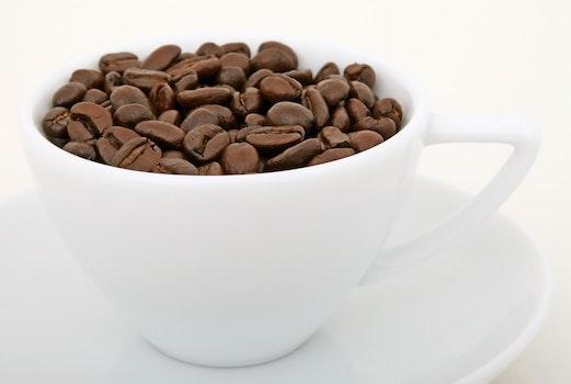 Coffee Bean on White Ceramic Mug