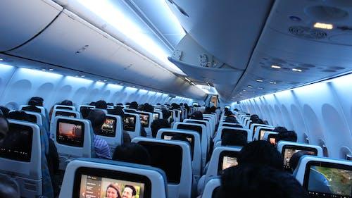 Foto stok gratis oman air, penerbangan