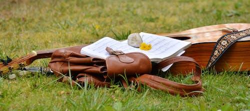 alan, çim, çim alan, çimen içeren Ücretsiz stok fotoğraf