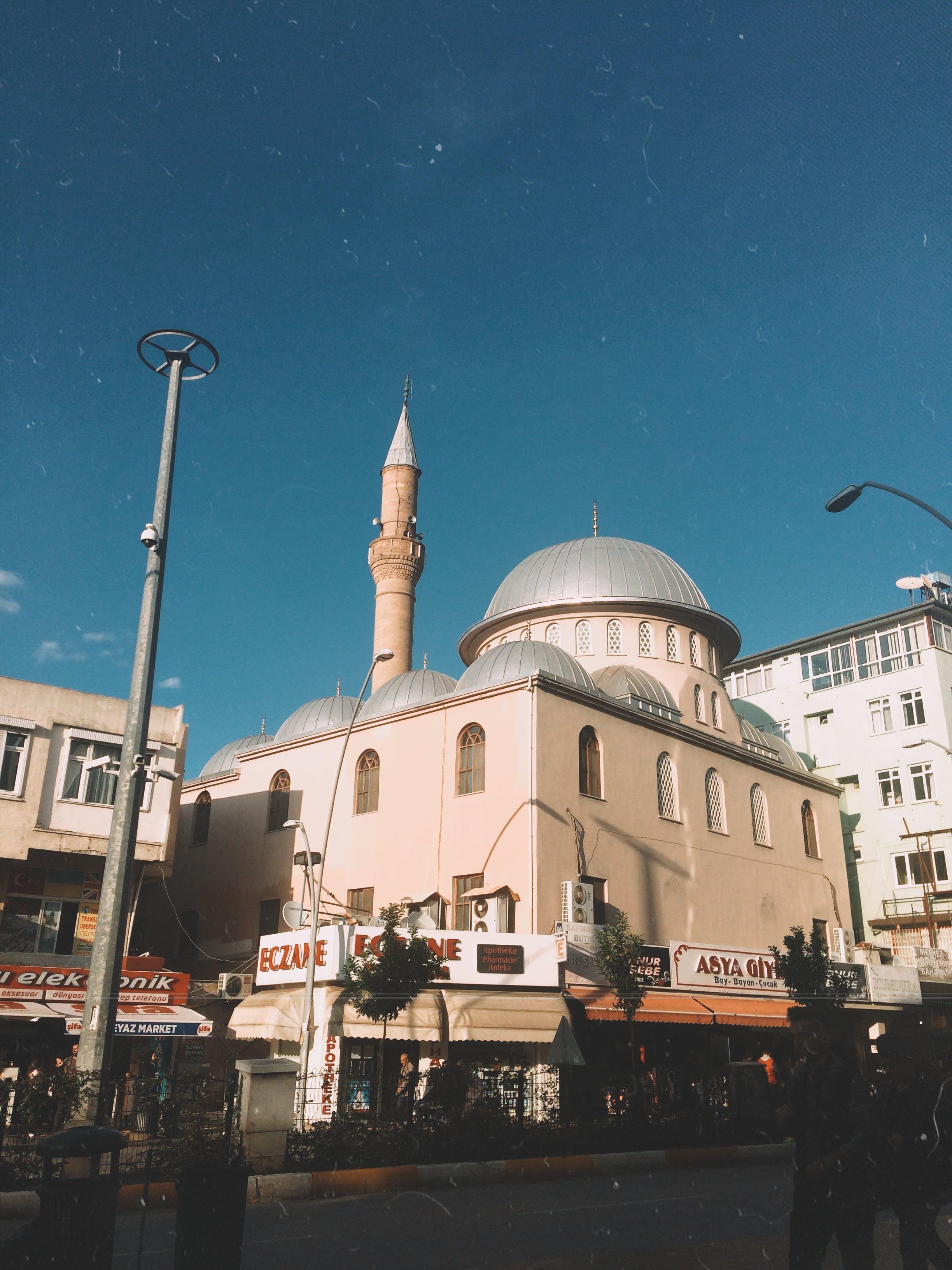 Kostenloses Stock Foto zu #moschee, architektur, baum, dom