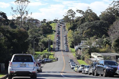 Základová fotografie zdarma na téma nový zéland, provoz, silnice